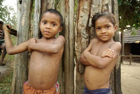 Widespread malnutrition.