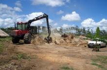 Zerstörung einer Hütte bei der Landnahme